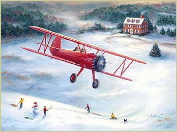 Holiday Biplane